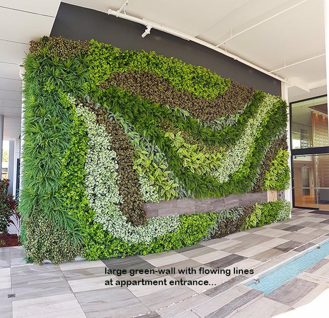 Large feature Green-Wall in appartment entry courtyard...