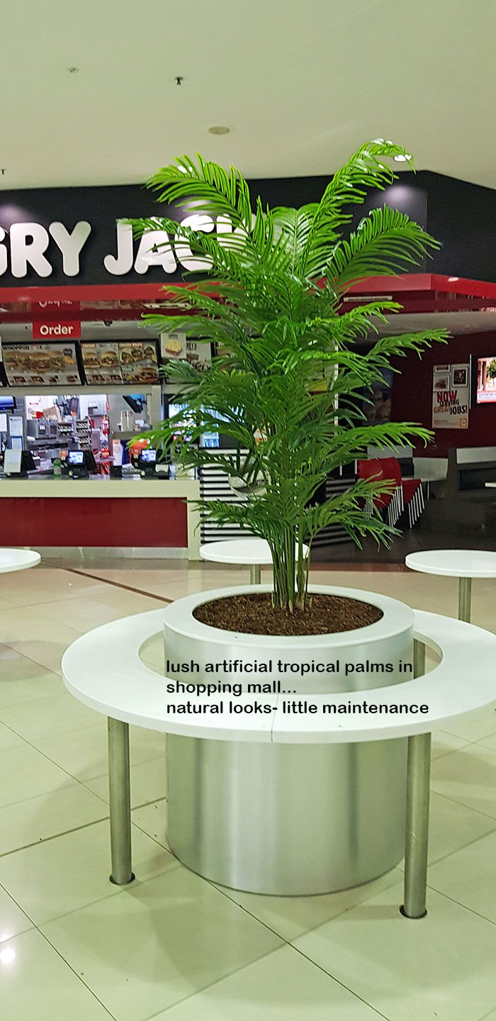 Tropical Palms in Shopping Mall eatery...