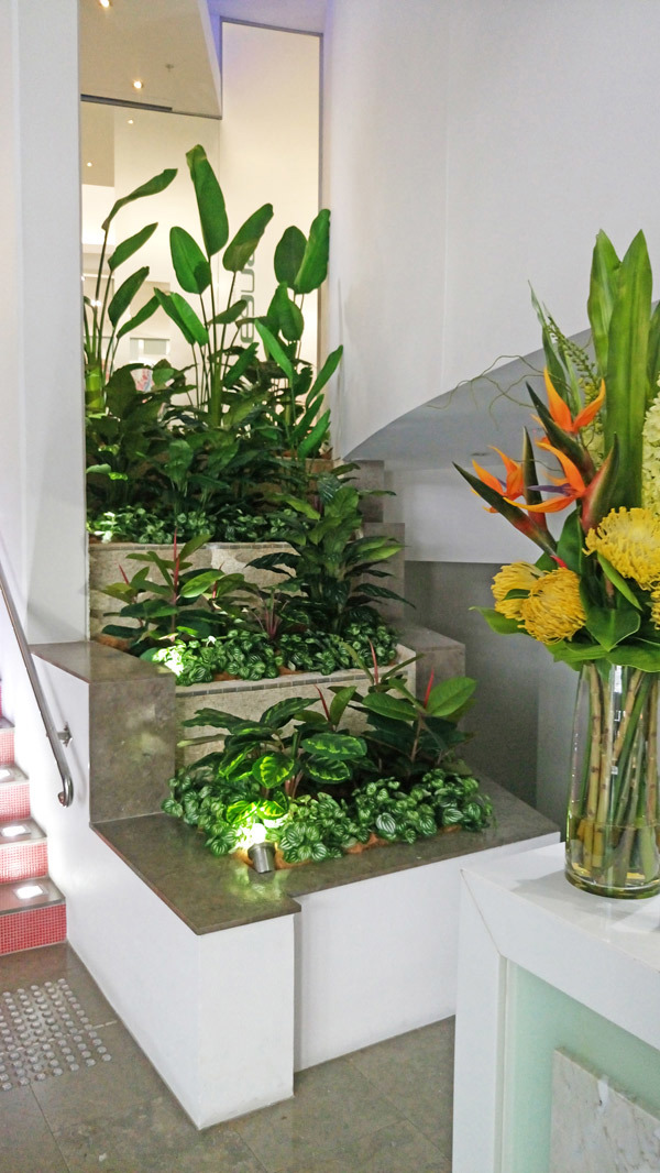 Foyer Revamp- smelly fountains to beautiful cascading gardens...