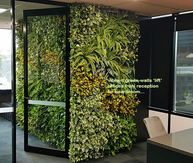 Offices get a 'lift' with vibrant green-walls from reception to boardroom...