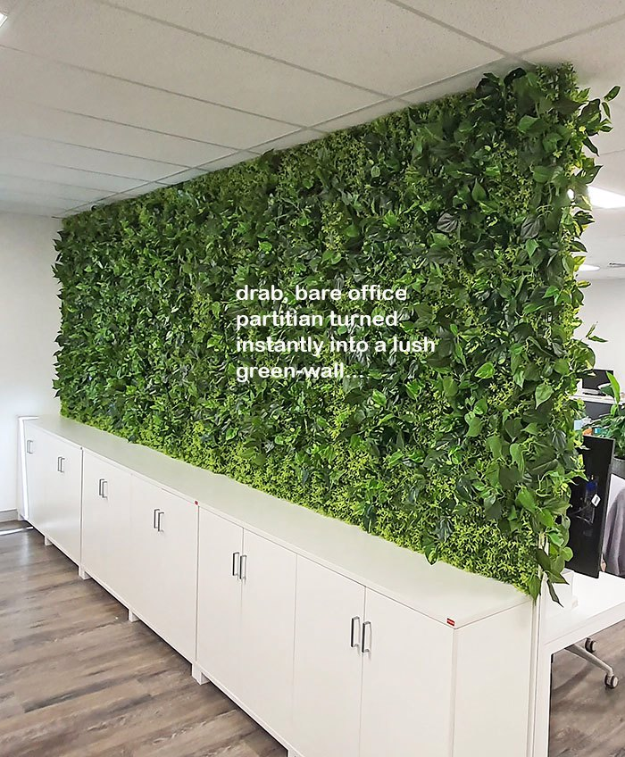 Office Greenery Solutions...fast!