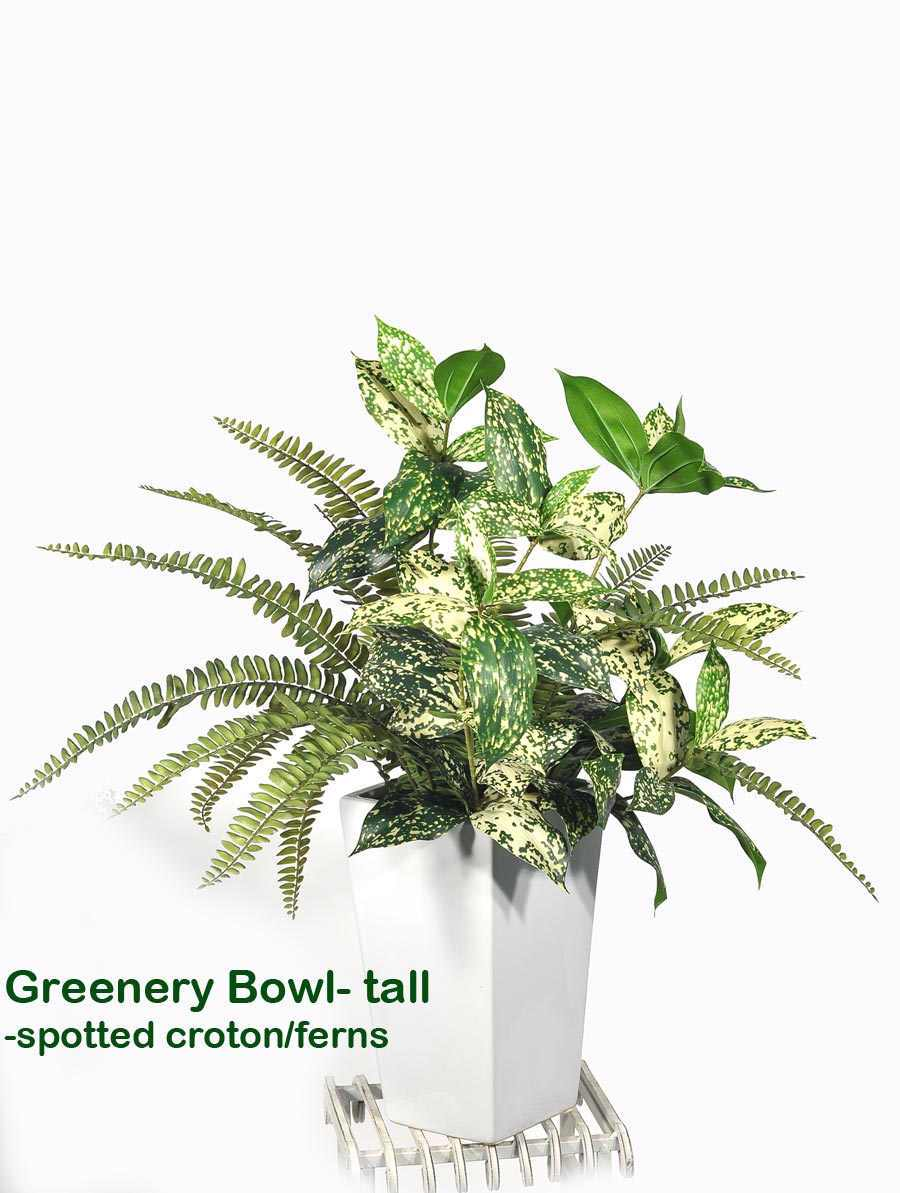 Articial Plants - Greenery Bowls- spotted Croton & Fern mix
