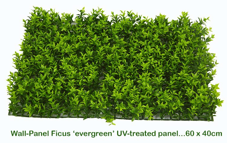 Articial Plants - Wall-Panels Ficus 'evergreen' UV x30 [approx 7m2]