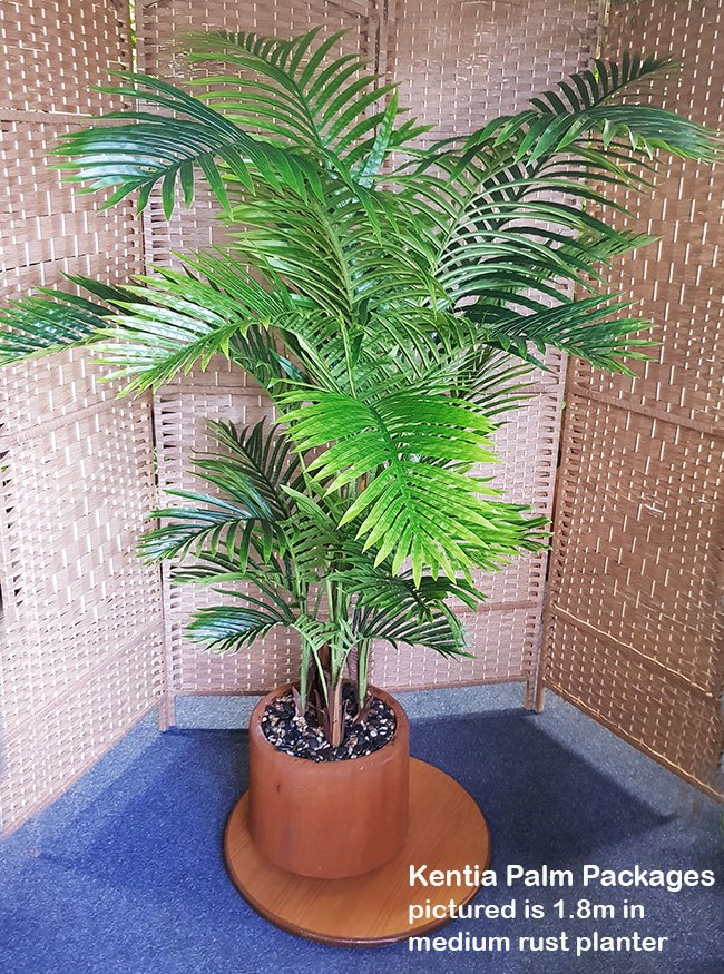 Articial Plants - Packages- Kentia palm 1.8m in planter