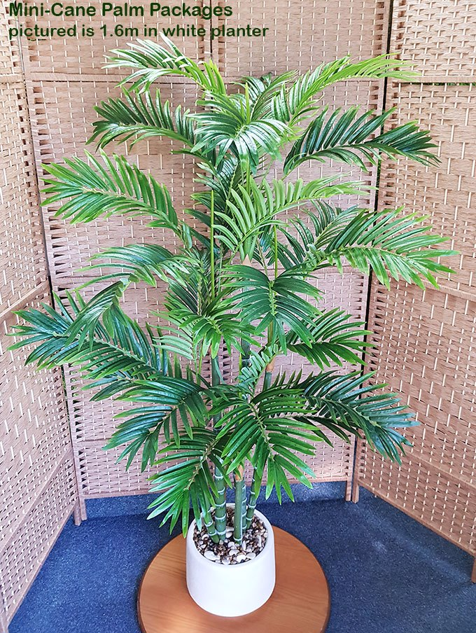 Articial Plants - Packages- Mini-Cane Palms 1.9m