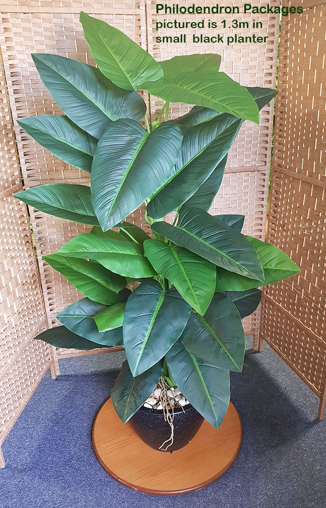Articial Plants - Packages- Philodendron 'elephant ears' 1.4m in planter