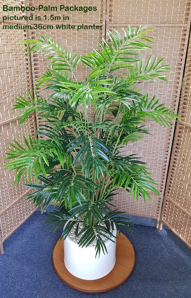 Articial Plants - Packages- Bamboo-Palm 1.6m in planter