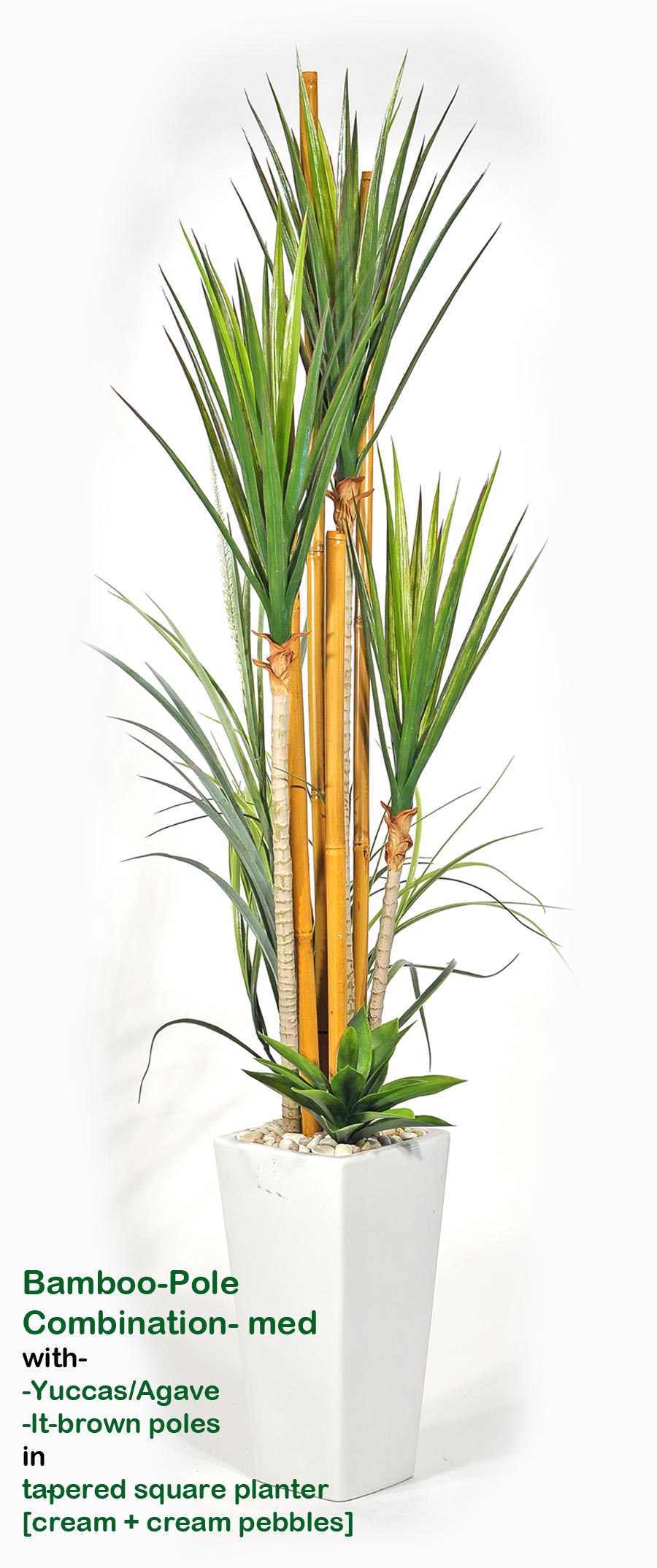 Bamboo-Pole Combination (Med)- Yuccas in light-planter