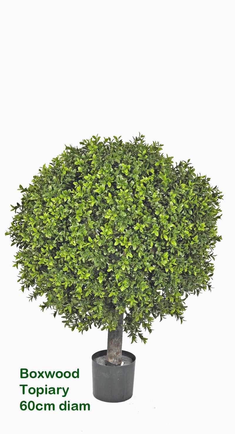 Boxwood Topiary Trees 40cm