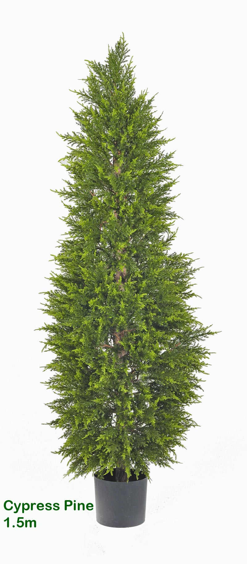 Box Springs For Sale >> artificial Cypress Pine, fake cypress pine, artificial conifer, fake conifer