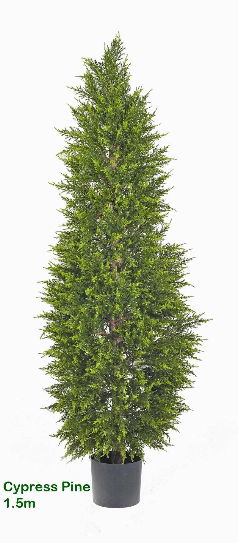 Articial Plants - Cypress Pine 1.5M