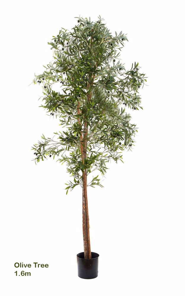 Articial Plants - Olive Tree 1.6m