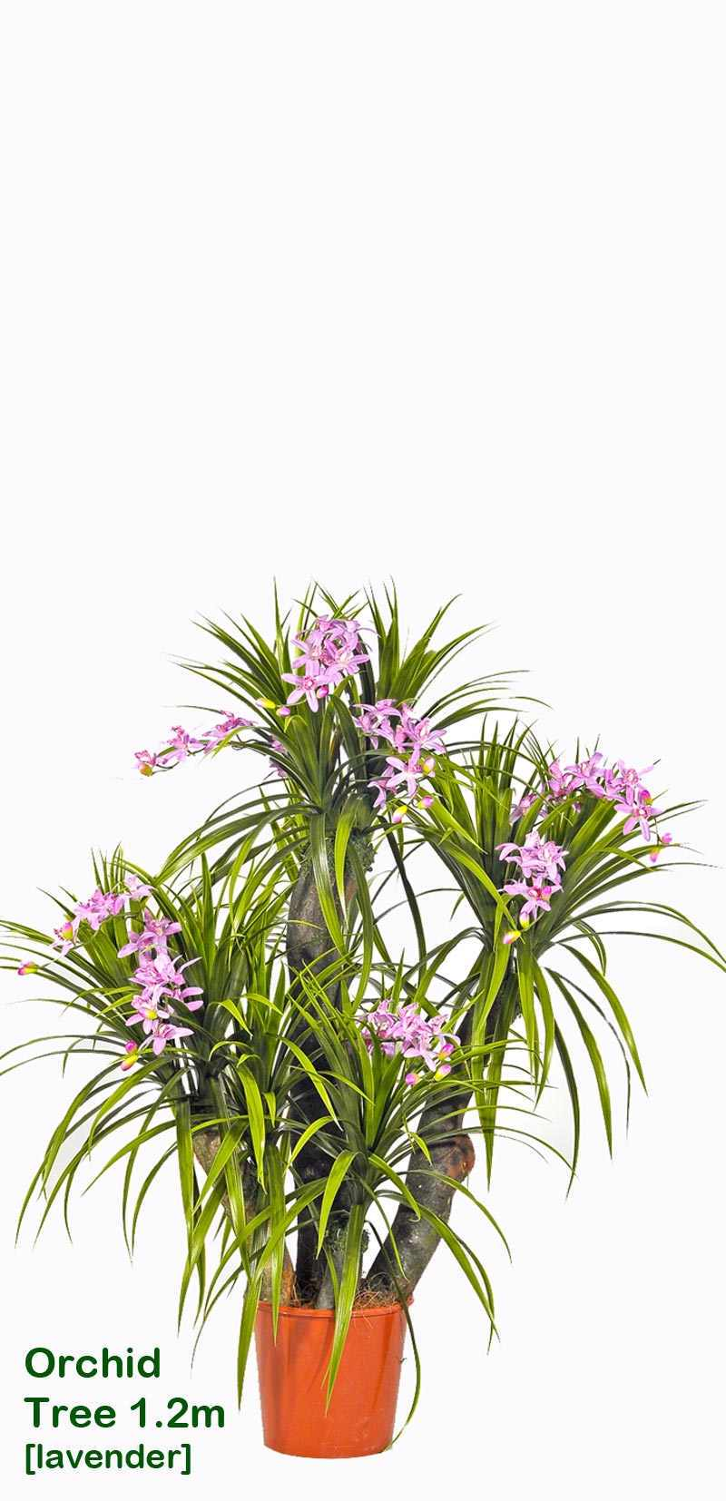 Articial Plants - Orchid Trees 1m