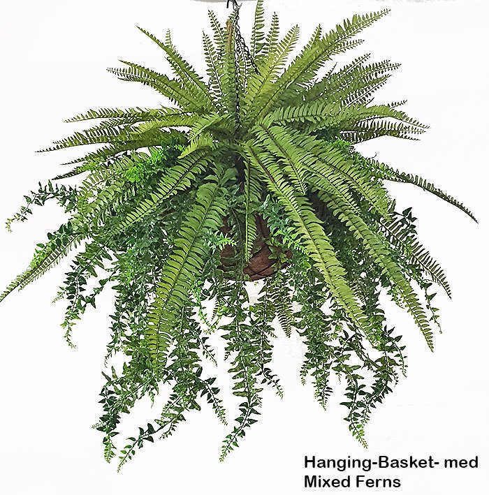 Articial Plants - Hanging Baskets- Mixed-Ferns (large)
