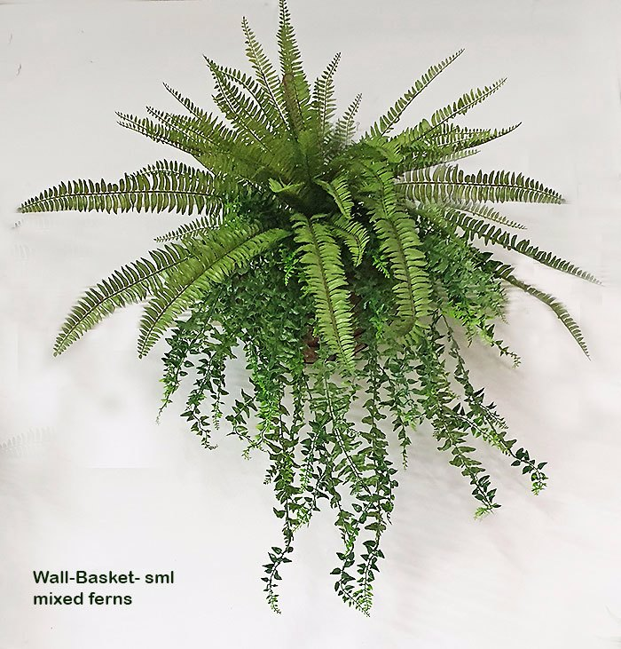 Articial Plants - Wall-Baskets Mixed Ferns-sml