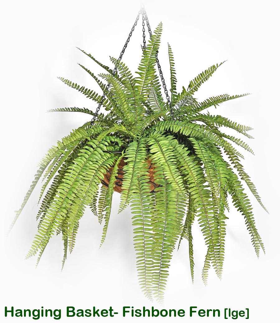 Articial Plants - Hanging Baskets- Ferns (small)