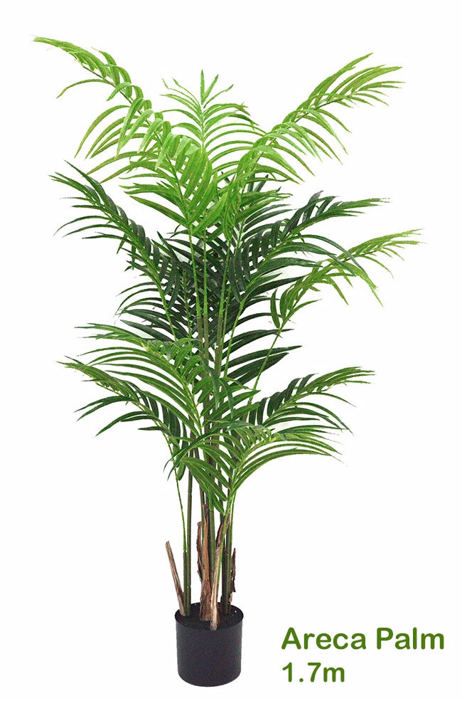 Articial Plants - Areca Palm 1.5m
