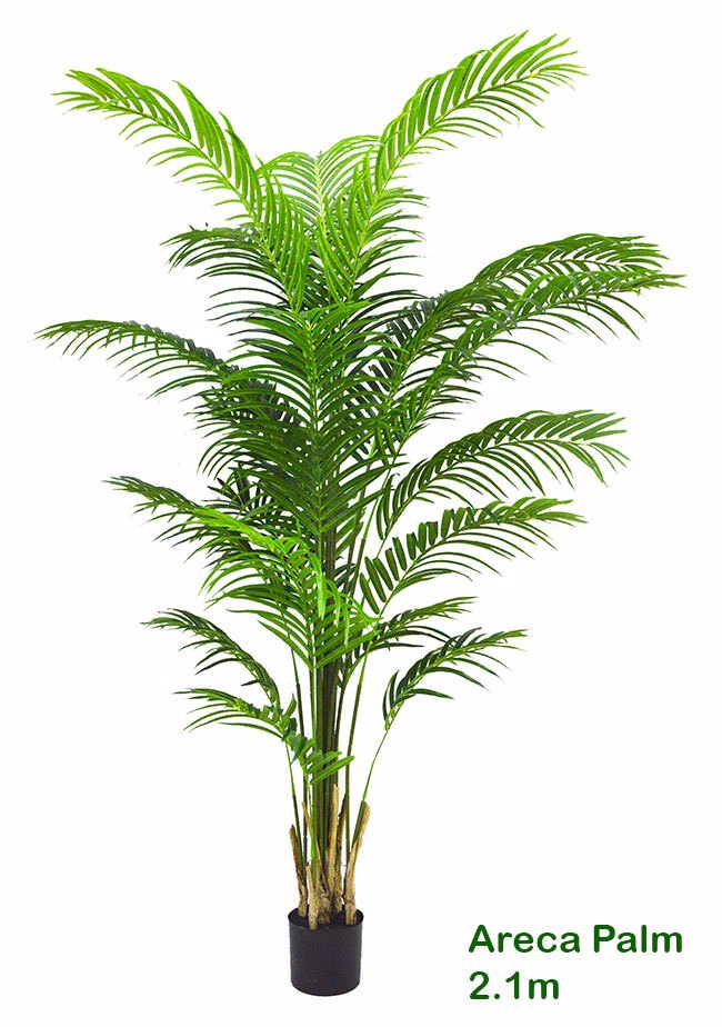 Articial Plants - Areca Palm 2.1m