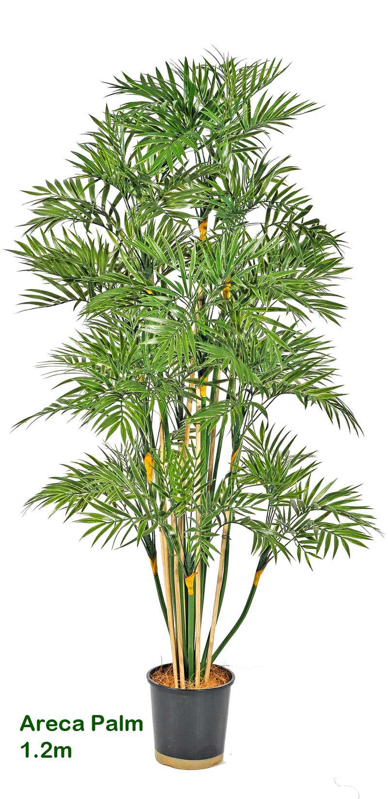 Articial Plants - Areca Palm 1.2M