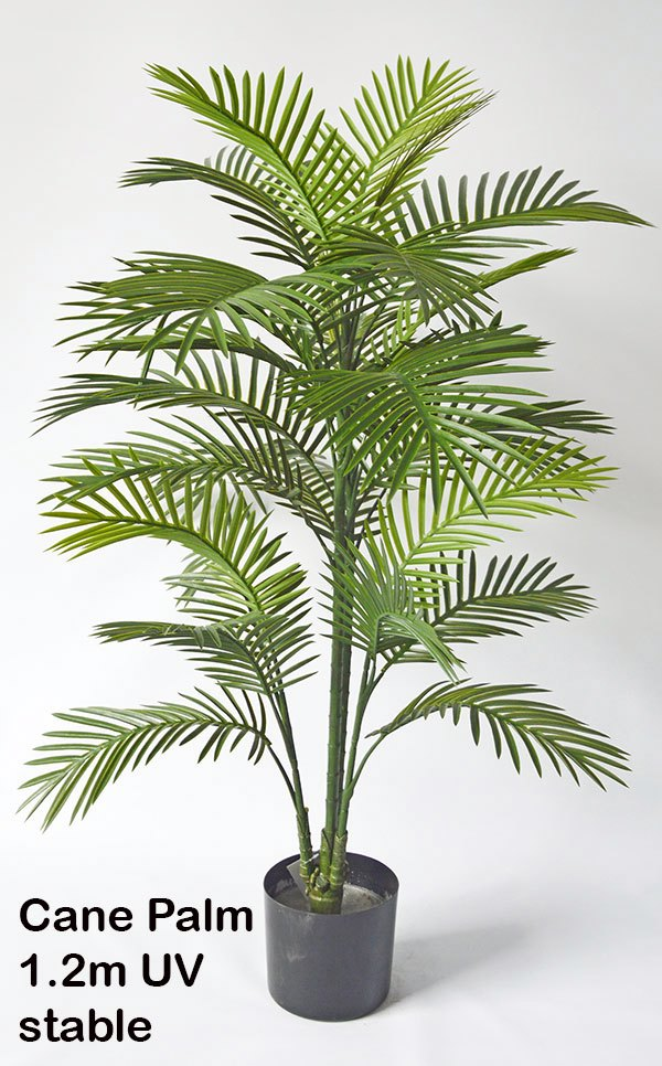 Articial Plants - Cane Palm 1.2m UV stable