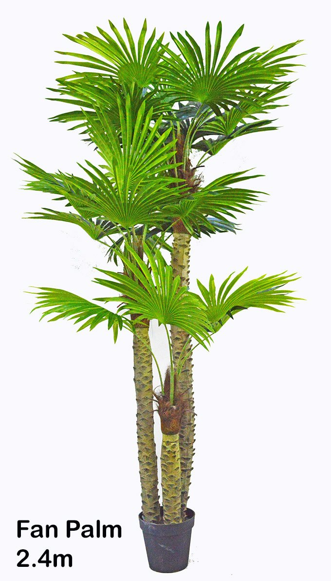 Articial Plants - Fan Palm 2.4m [lge foliage]