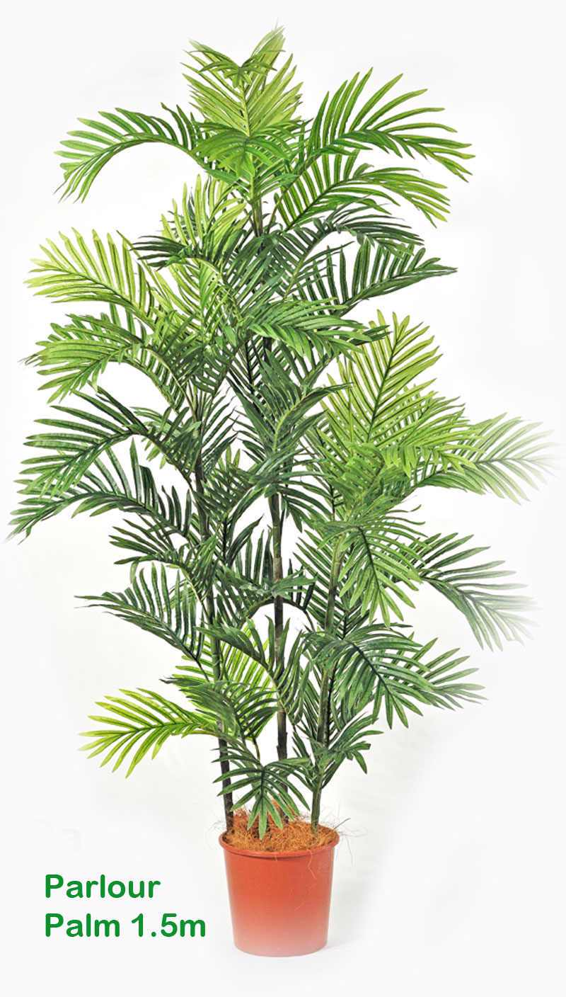 Articial Plants - Parlour Palm 2.1m