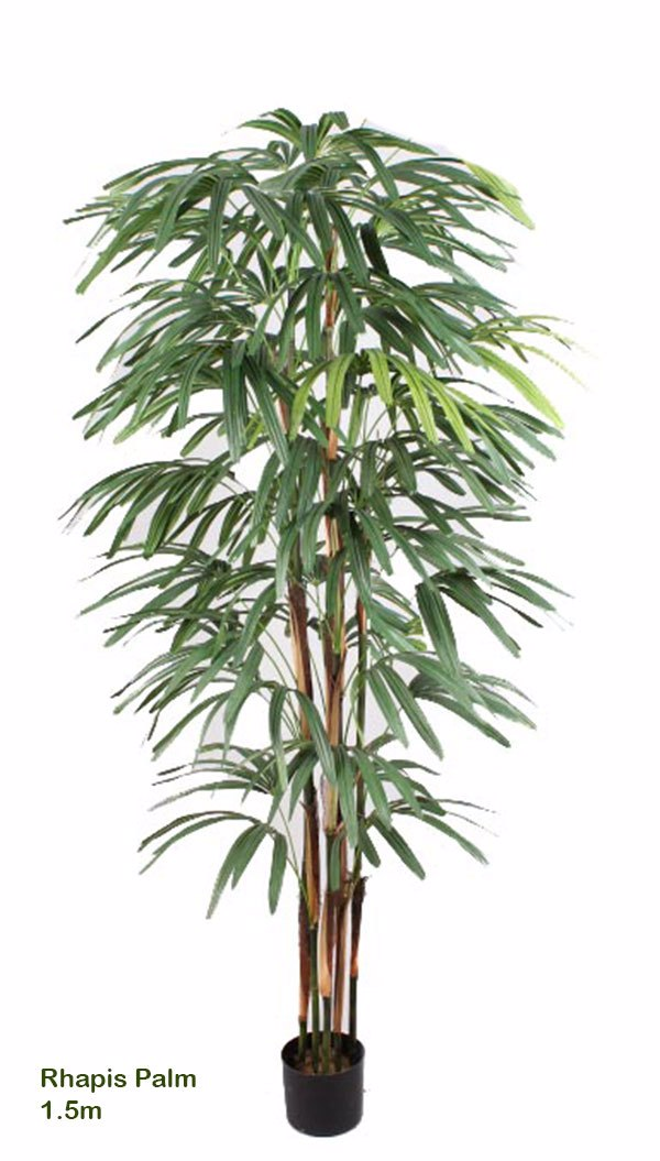Articial Plants - Rhapis Palms 1.5m