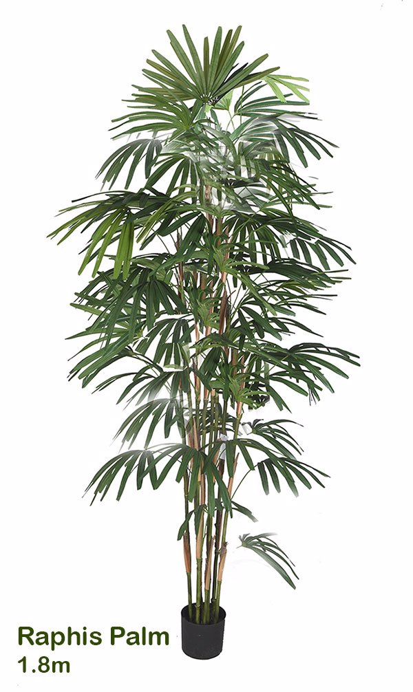 Articial Plants - Rhapis Palms 2.1m