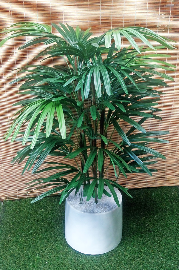 Articial Plants - Packages- 1.9M Rhapis Palms in planter