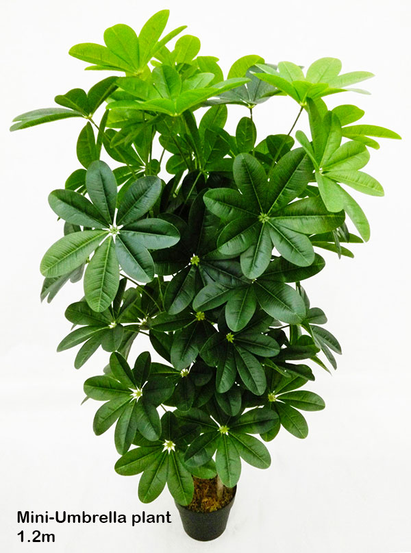 synthetic plants trees supplier