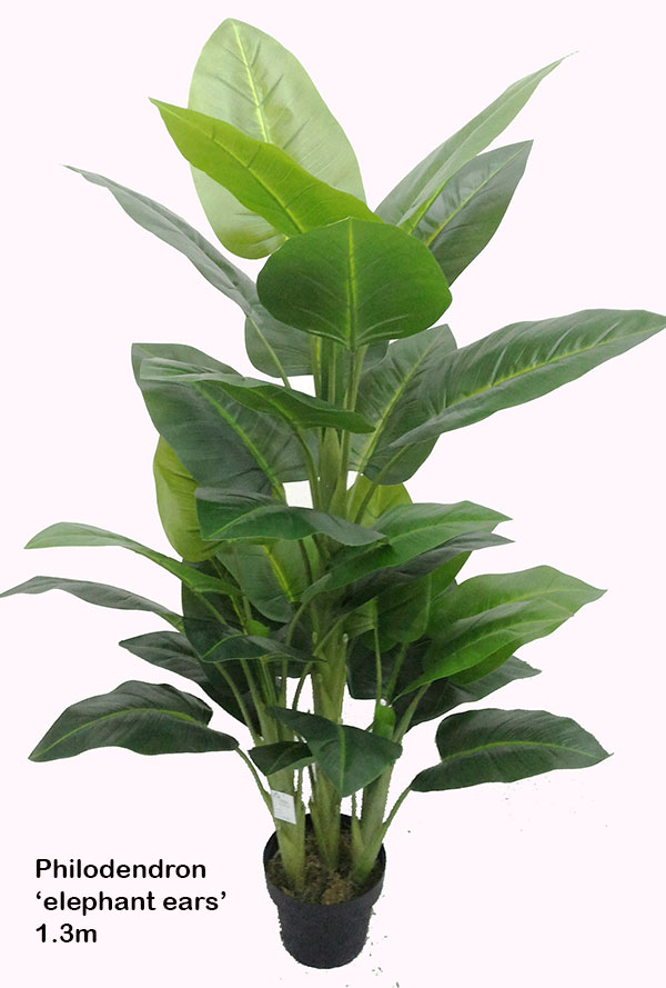 Articial Plants - Philodendron 'elephant-ears' 1.3m