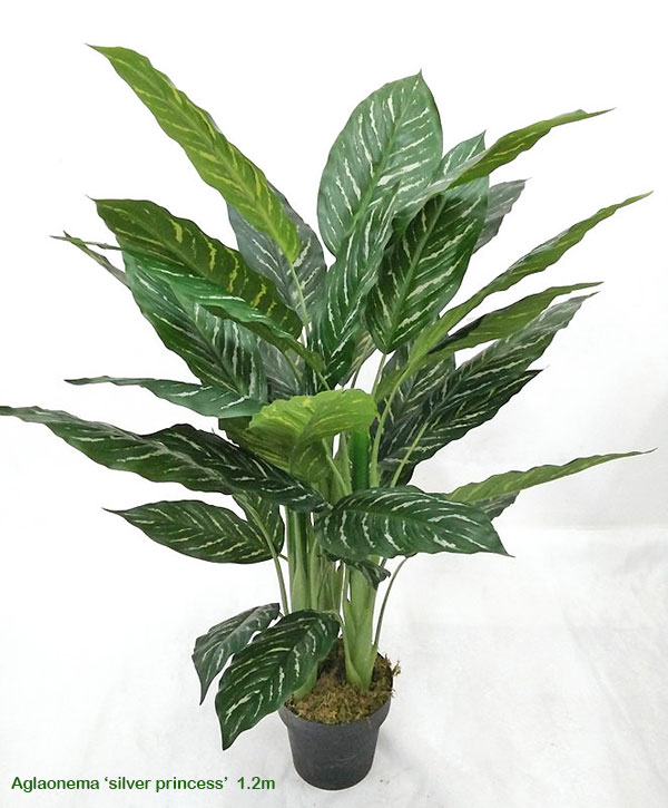 Articial Plants - Silver Princess Plant 1.2m