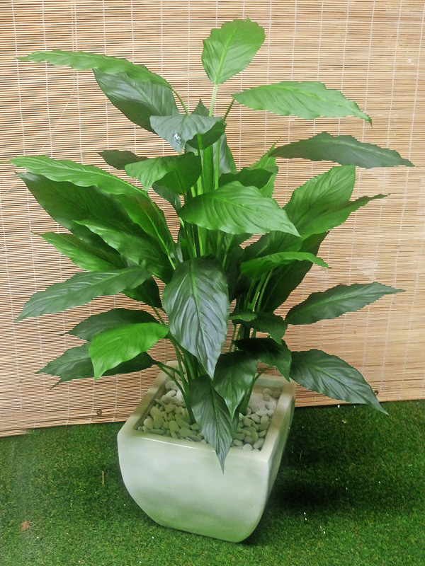 Articial Plants - Packages- Peace Lily 0.9M