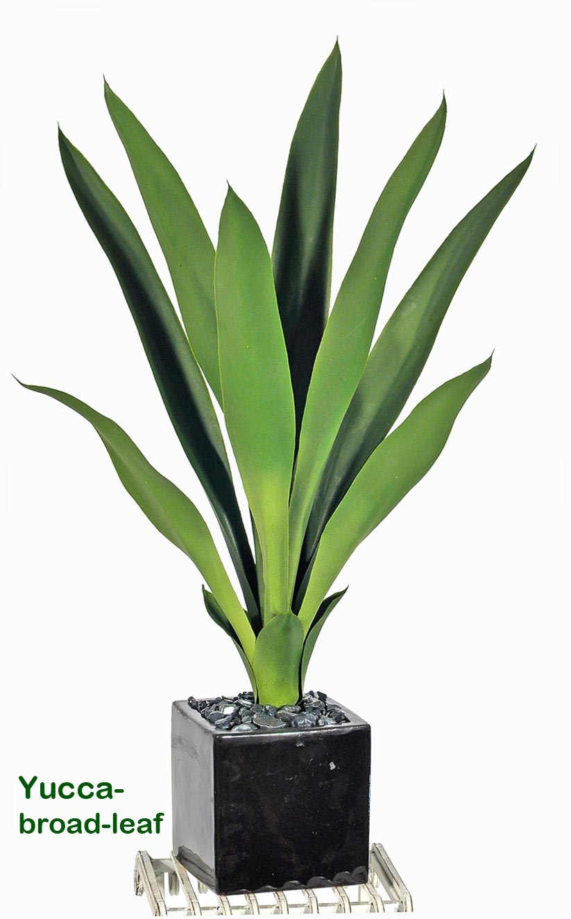 Articial Plants - Yucca- upright with broad-leaf