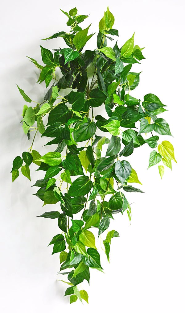Articial Plants - Trailing Bush- lge Philo