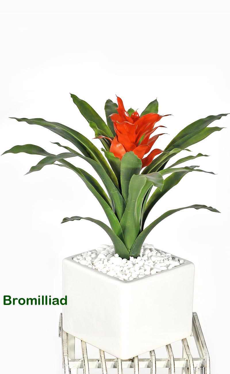Articial Plants - Bromilliad in white pot with pebbles