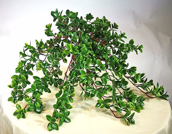 Articial Plants - Jade- trailing plant