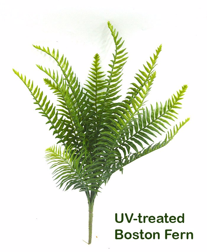 Articial Plants - Boston Fern UV-treated