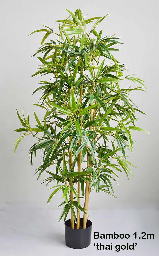 Articial Plants - Bamboo 'thai gold' 1.2m