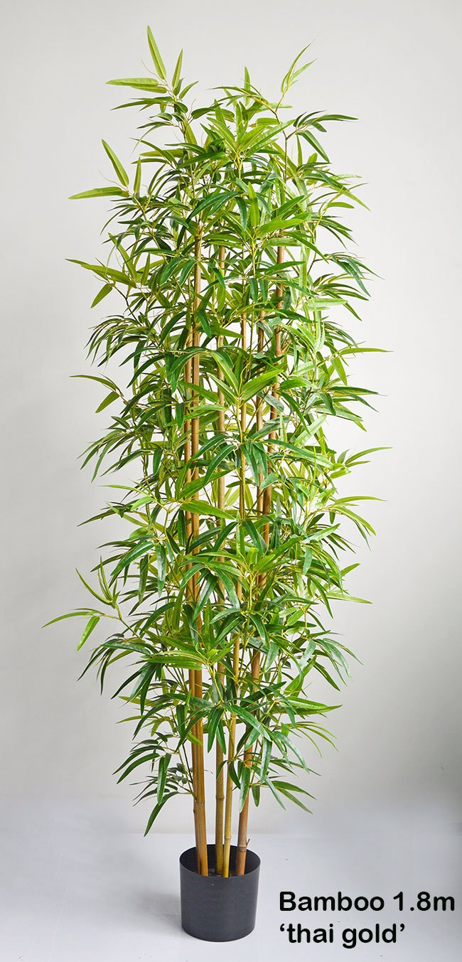 Articial Plants - Bamboo 'thai gold' 1.8m