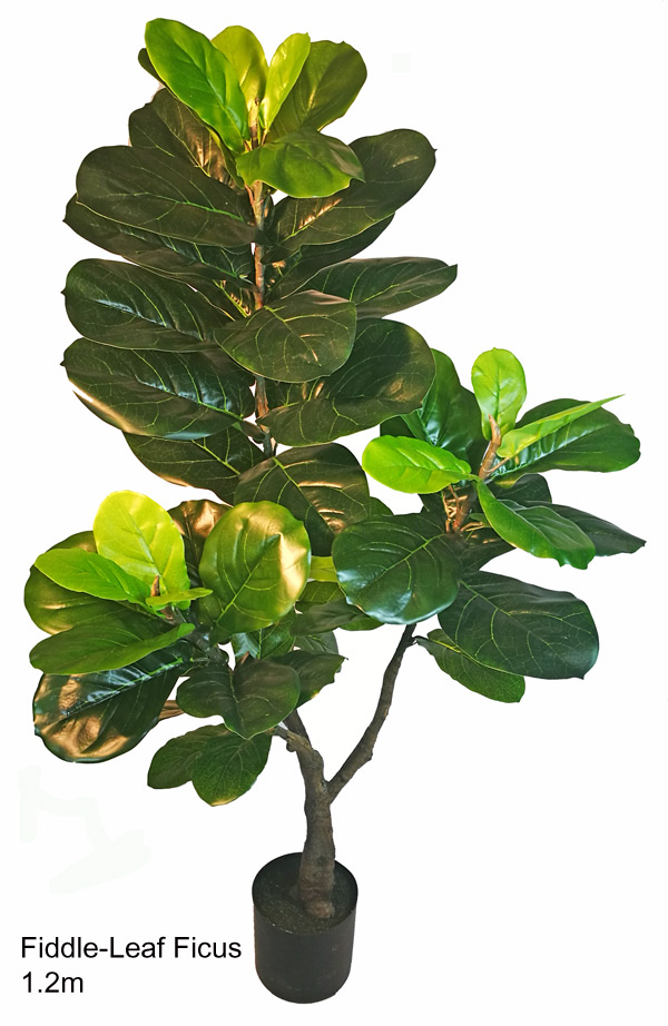 Articial Plants - Fiddle-Leaf Ficus 1.2m