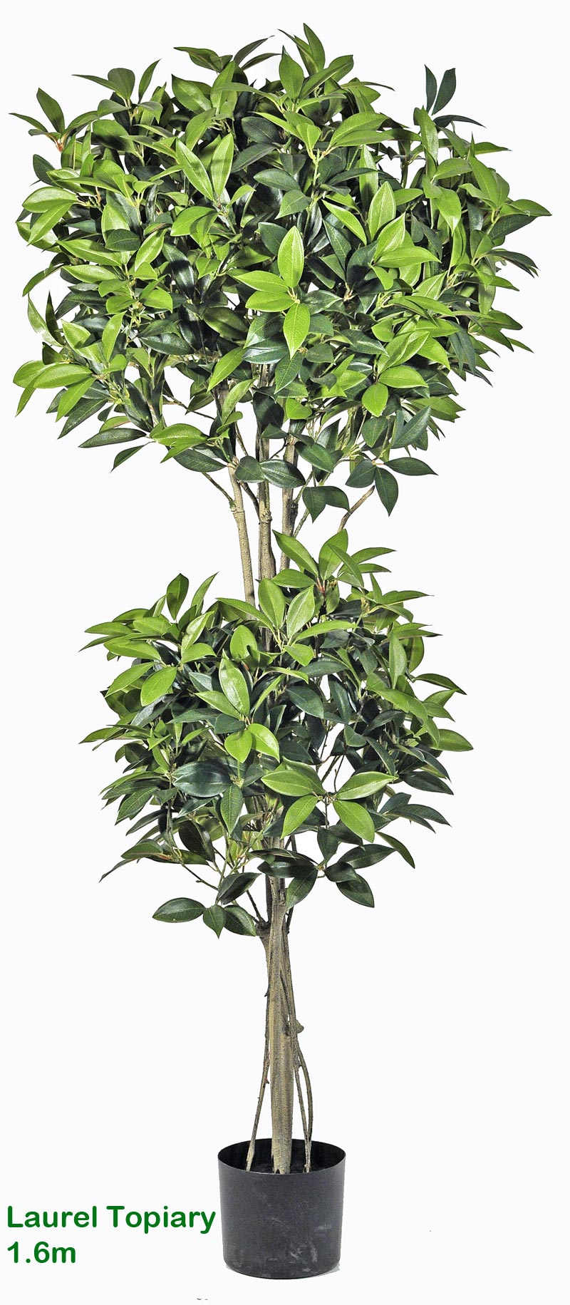 Articial Plants - Laurel Topiary 1.6m