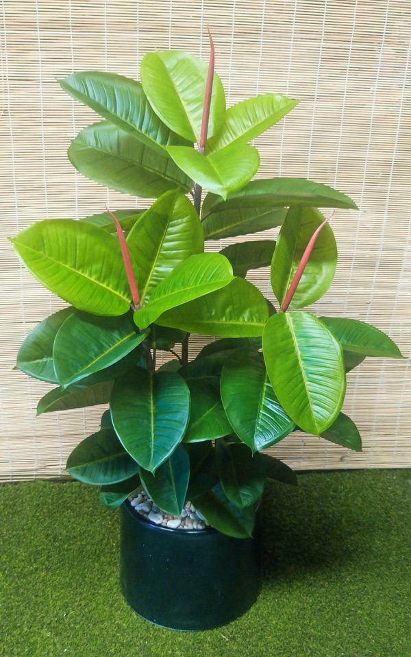 articial plants packages rubber trees 12m