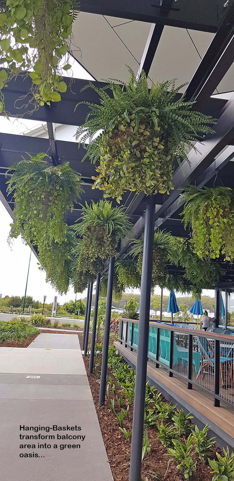 Hanging-Baskets transform new Tavern balcony from drab to cool green...