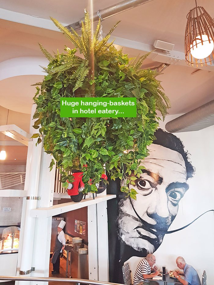 Huge Hanging-Baskets add cosy green feel to Hotel Eatery...