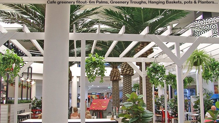 Cafe in Mall is a green oasis...