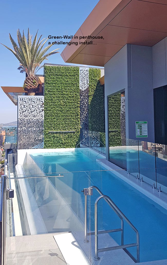 Green-Wall above Penthouse Pool- tricky install!