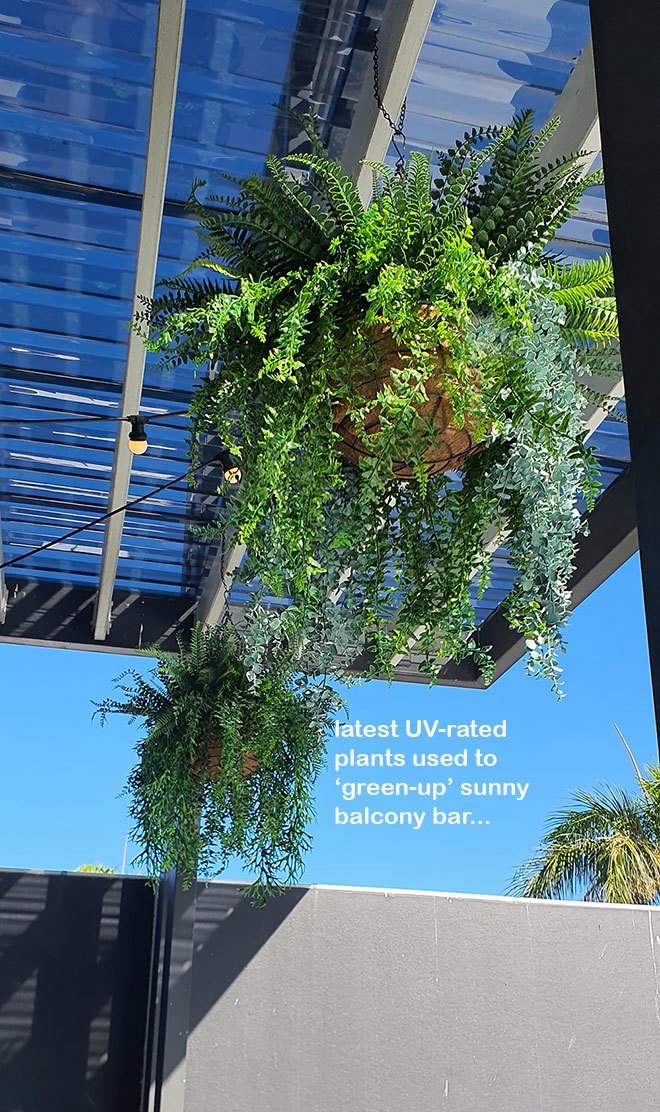 Club 'greens-up' sunny Balcony Bar with latest UV-rated artificial plants...