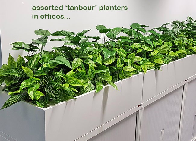 Office 'tambour' Planters...
