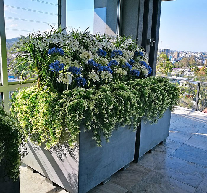 Colour & Greenery brighten-up penthouse balcony